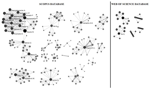 "Authors' networks retrieved from ""key performance indicator"" from Scopus and WoS databases"