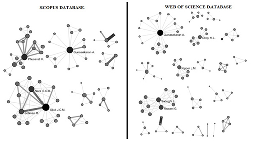 "Authors' networks retrieved from ""measurement"" and ""competitiveness"" from Scopus and WoS databases"