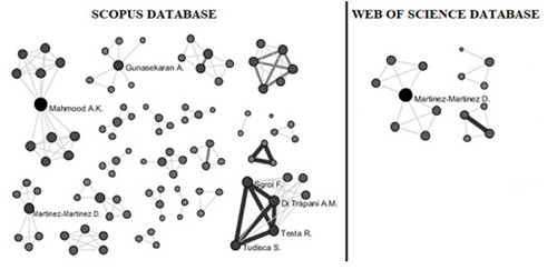 "Authors' networks retrieved using the search terms ""competitiveness"" and ""SME"" from Scopus and WoS databases"