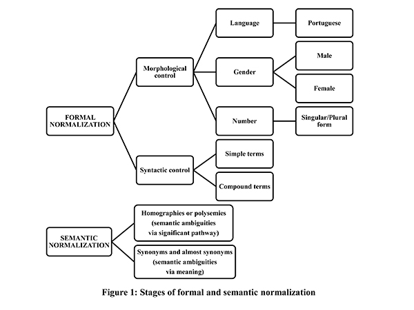 Stages of formal and semantic normalization