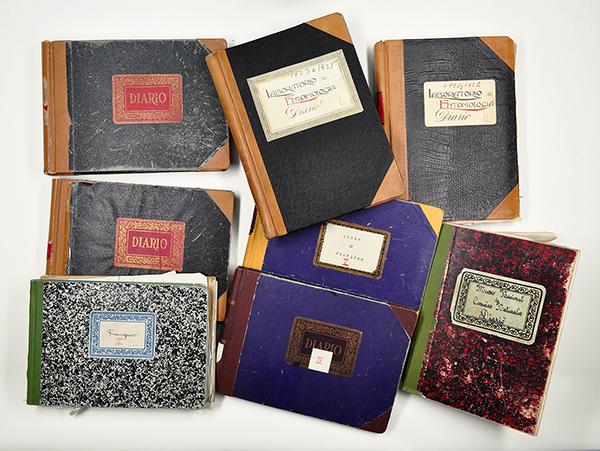 Diarios de actividades, cuadernos de laboratorio, libros de registro del fondo del Instituto Español de Entomología