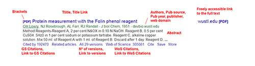 Fields extracted from each Google Scholar record in the search engine results page